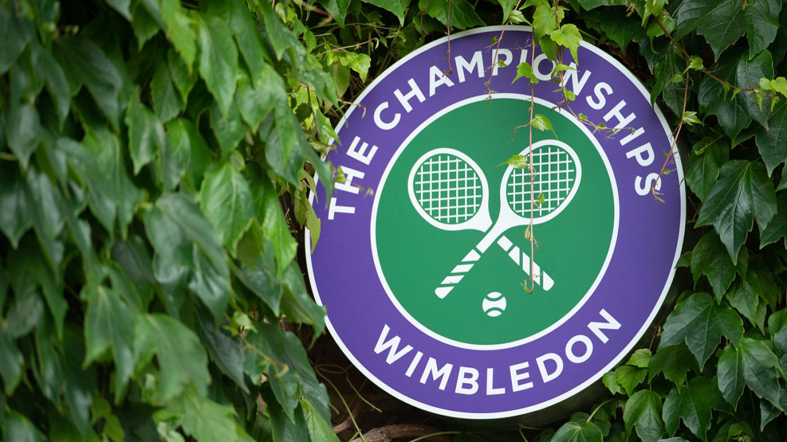 wimbledon england-wimbledon logo in blue green colour